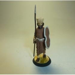 (H-24) Guardia del Rey Dario